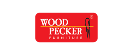 Wood Pecker - Aminjikarai