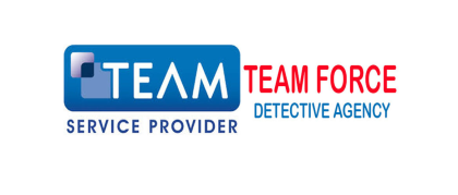 Team Force Detective Agency